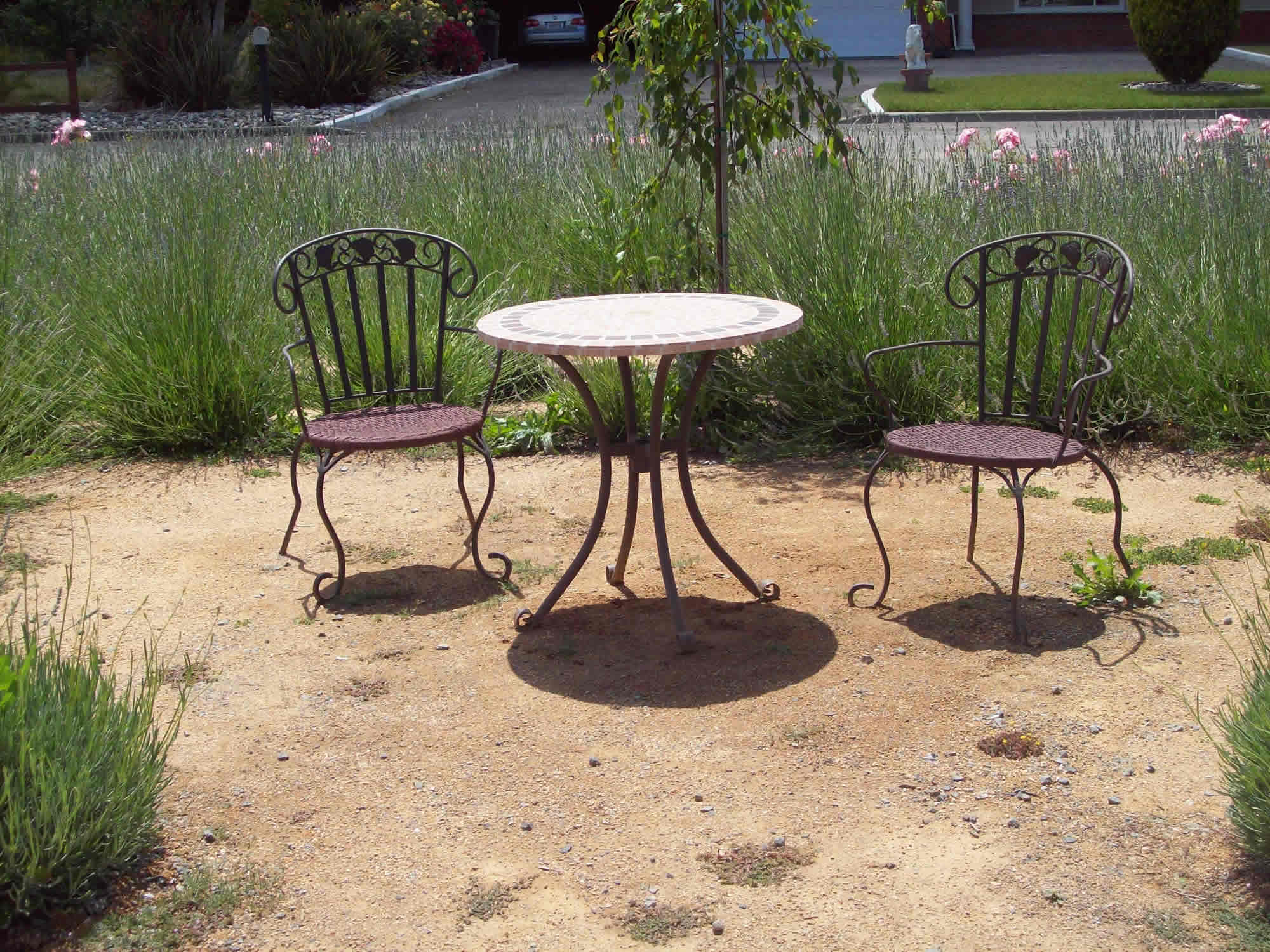 lavendar-garden